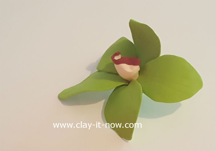 clay green orchid flower - orchid clay - 9