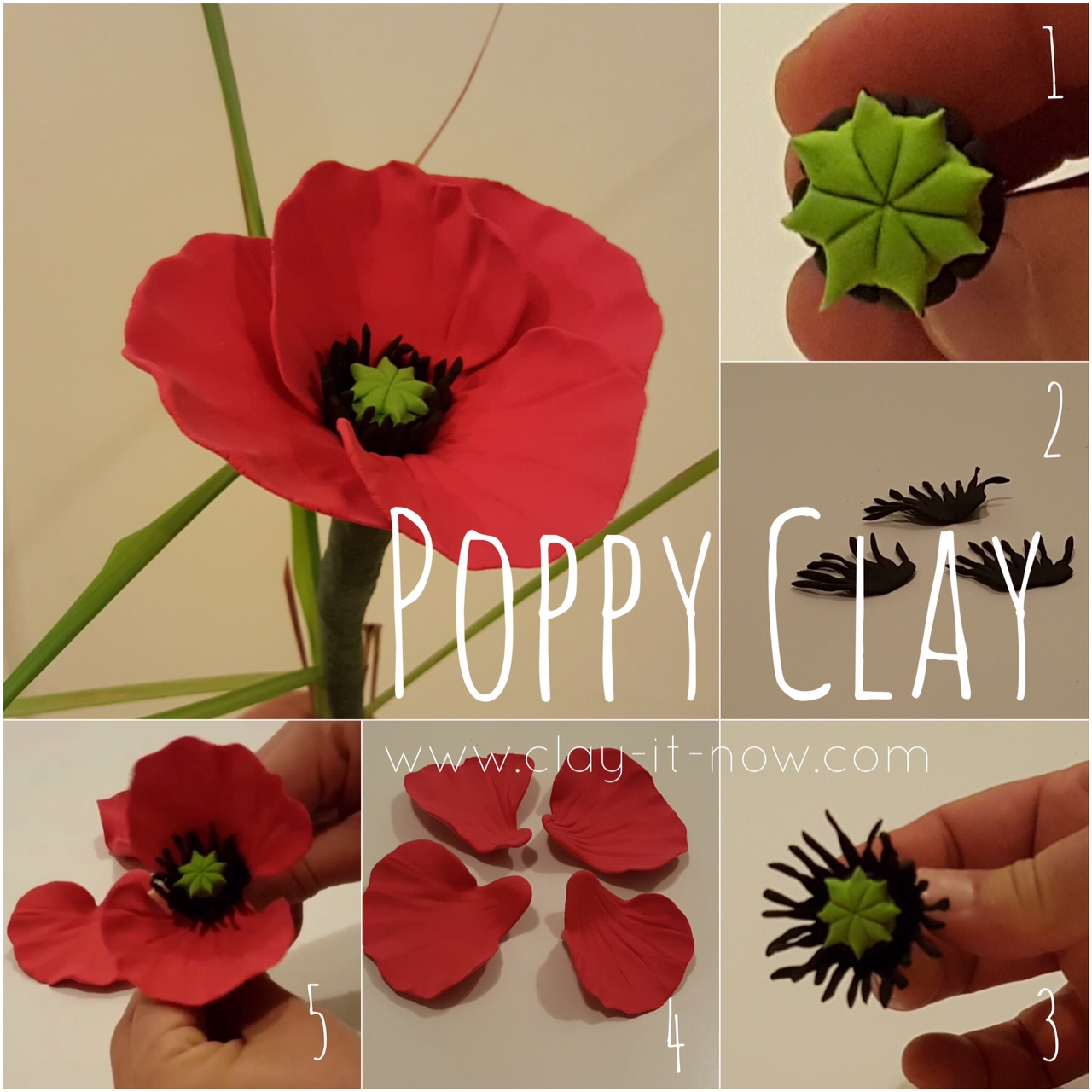 Poppy Flower Tutorial
