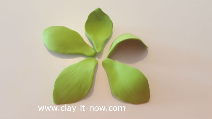 clay green orchid flower - orchid clay - 5