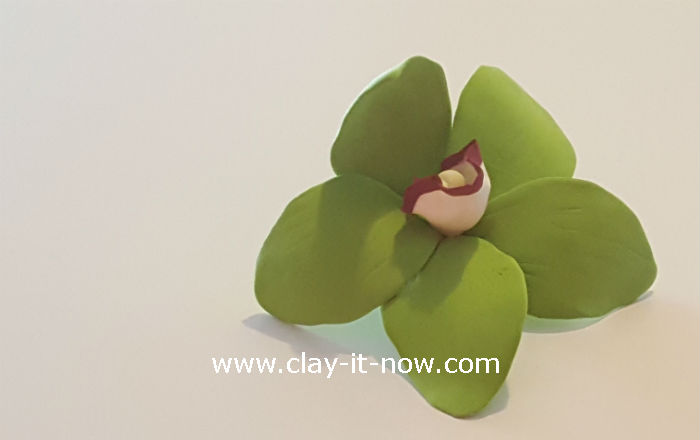 clay green orchid flower - orchid clay - 8